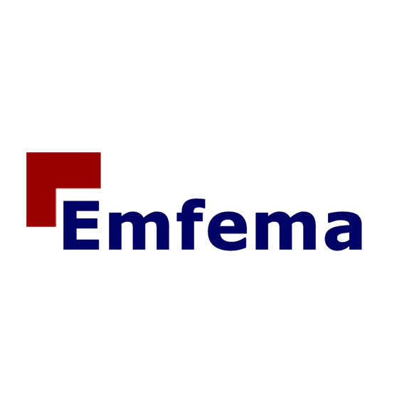 logopartners-emfema